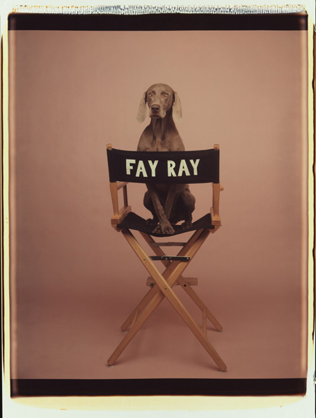 Fay-Ray-wegman-photo-dog