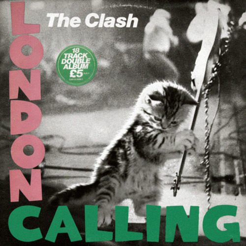 London_calling_kitten_cat