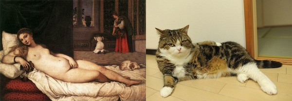 Cats-pose-as-famous-art-portraits
