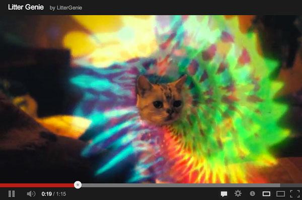 Psychodelic-cat-litter-genie