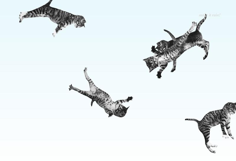 Cat-bounce-cute-site