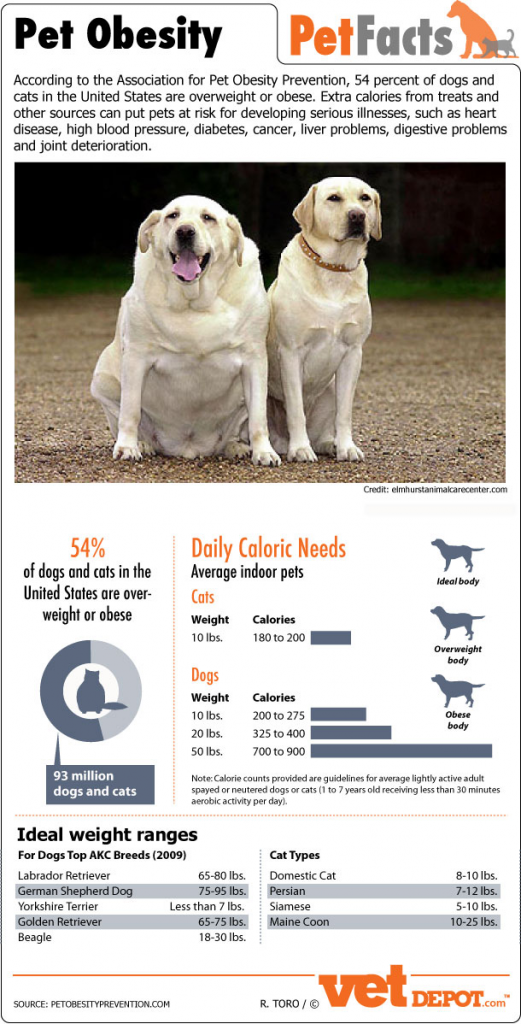 Pet-obesity-facts